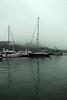 juneau harbor_001