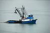 netfish Juneau_003