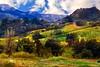 SantaMonica Best_005p
