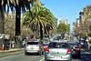 SF Palm lined Street_F