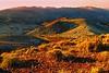 Dante Hills DV_016