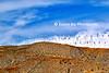 Windmills PS_008_F