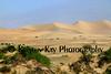 Mesquite dunes 70d_001e_F