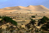 Mesquite dunes 70d_002ms_F