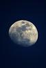 Mesquite Moon_002