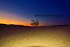 Mesquite DV Sunset_004_F