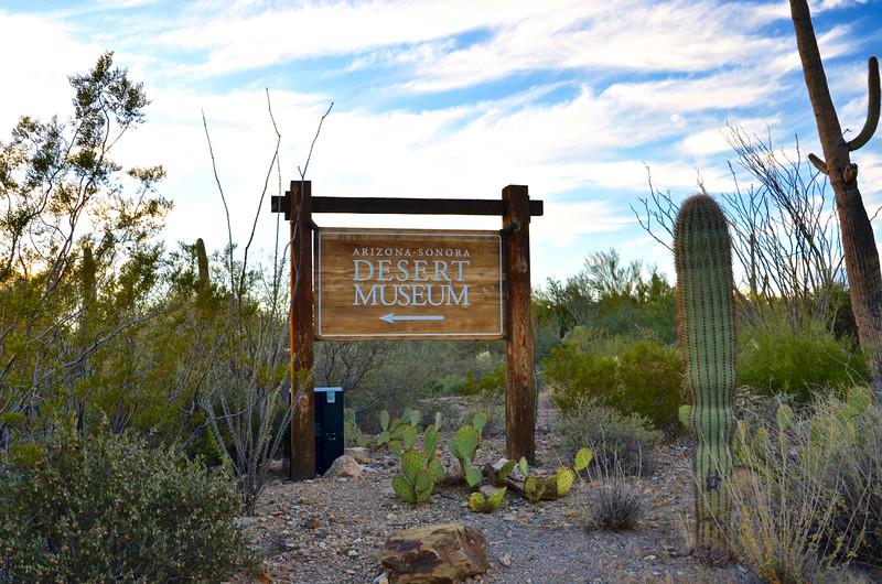 Arizona-Sonora Desert Museum: November 12, 2015