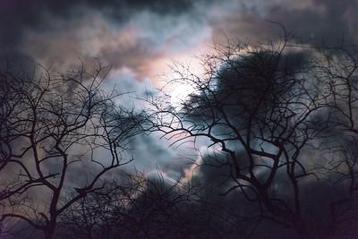Christmas Moon II