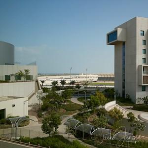 Travel; United Arab Emirates; Abu Dhabi; NYU; New York University;