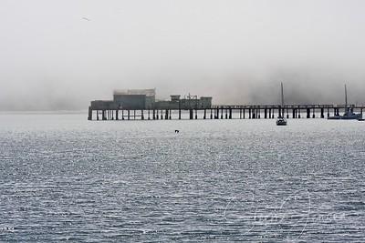 California - Pigeon Point Lighthouse; USA;