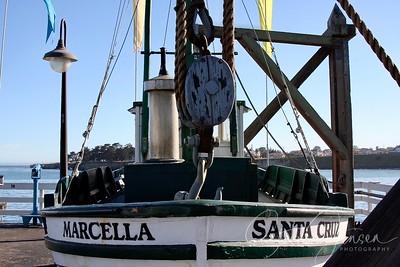 Travel; United states of America; California; Santa Cuz;
