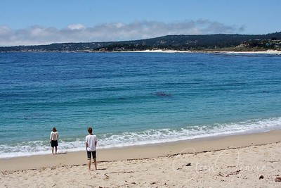 Travel; United states of America; California; Carmel by the See;