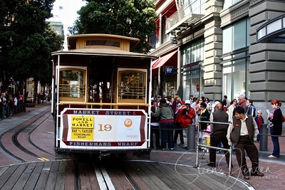 Travel; United states of America; San Francisco;