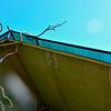 SAFARI WEST, NORTHERN CALIFORNIA, USA