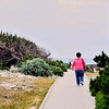 From Asilomar Conference site you have to walk the wood boardwalk through the dunes to the beach.