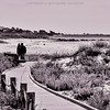 A lovers meeting at the end of the boardwalk from Asilomar.
