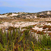 OXNARD BEACH PARK, CALIFORNIA, USA