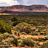 A view of La Sal Mountain range beyond. This was taken not far from the Visitor's Center.