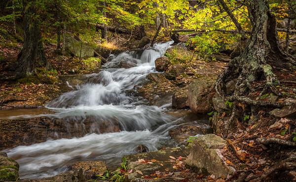Jordan Creek5