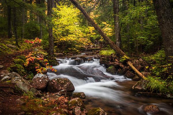 Jordan Creek2