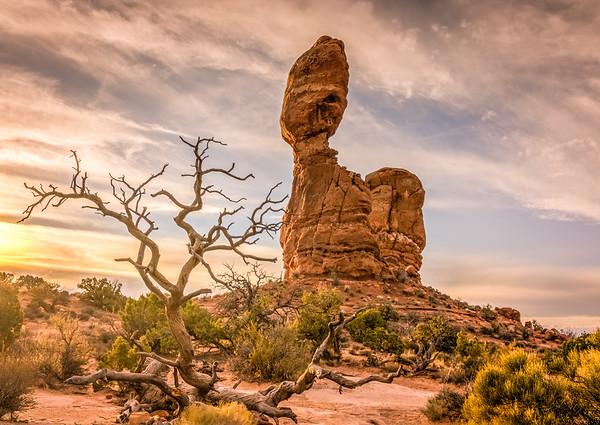 Balanced Rock and tree