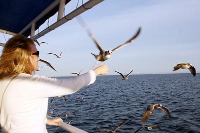 Sara feeds the birds.