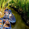 CON PHUNG ISLAND, MEKONG DELTA, VIETNAM