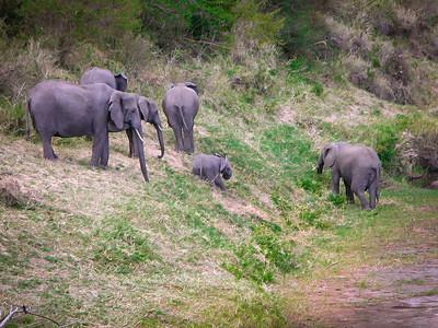 Africa 2002-Kenya