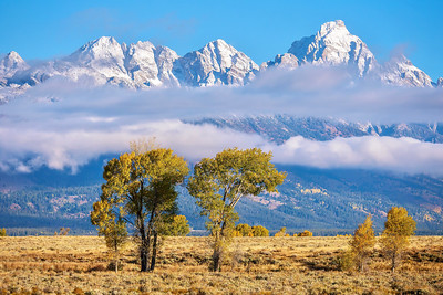 Fresh snow on the Grand Teton mountain range, in autumn.