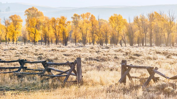Autumn in Wyoming.