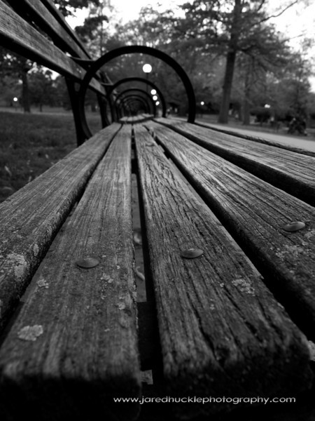 Park Bench, Bushnell Park, Hartford, CT