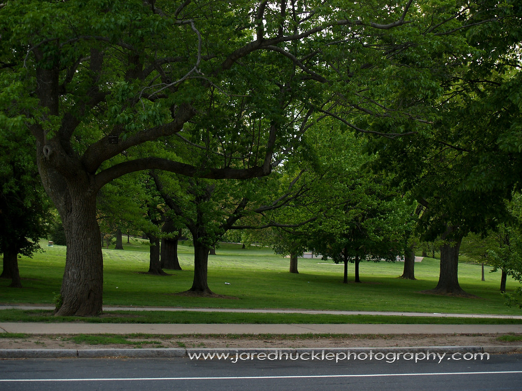 Bushnell Park, Hartford, CT