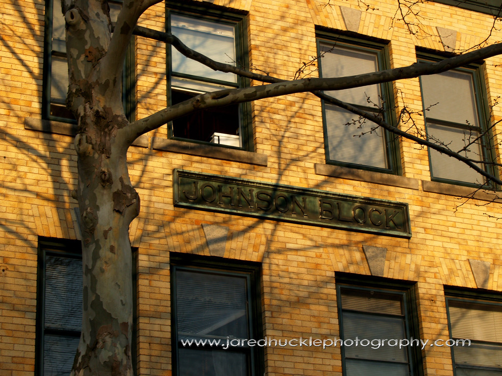 Sycamore Tree and Brick Building