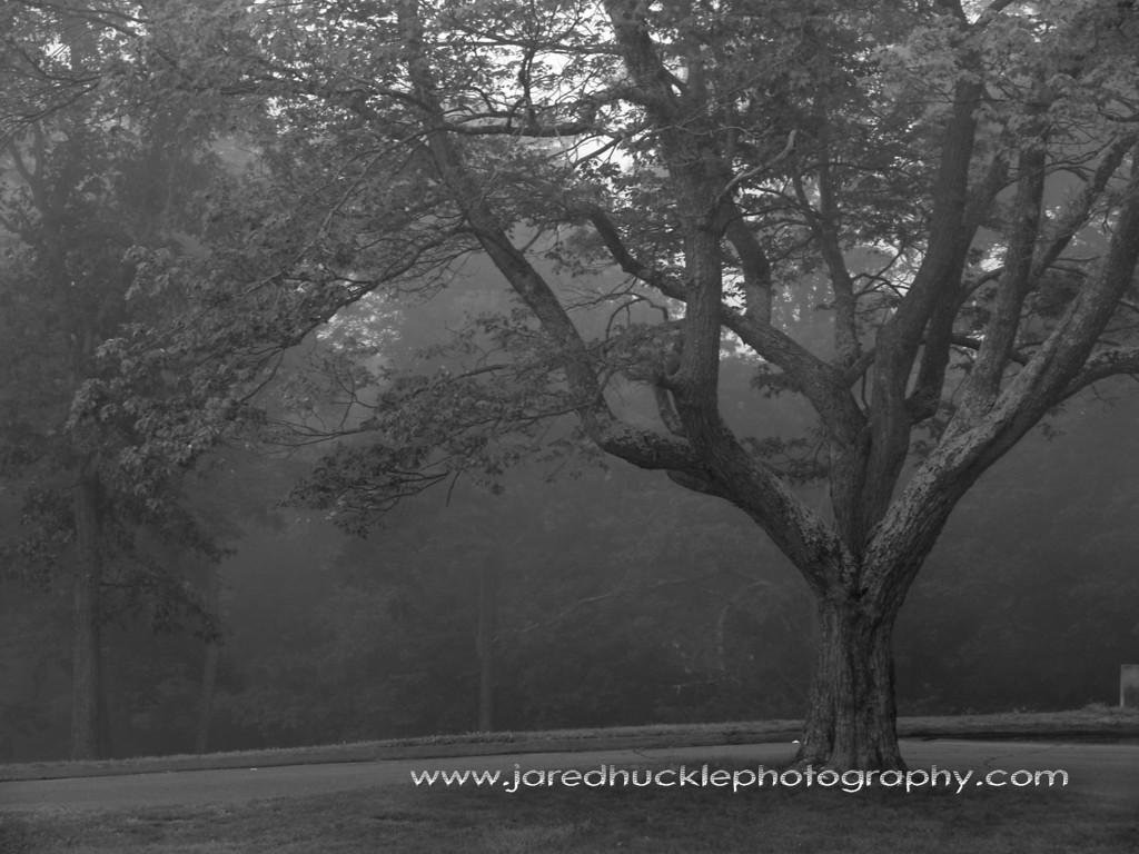 Henry Park, Rockville, CT