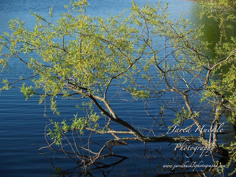 Snipsic Lake, Connecticut