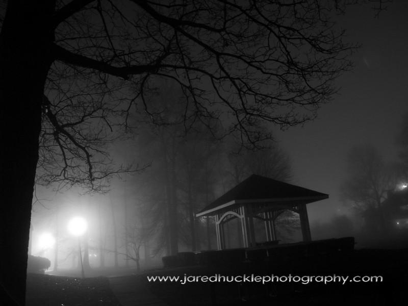Trees and gazebo in a night fog