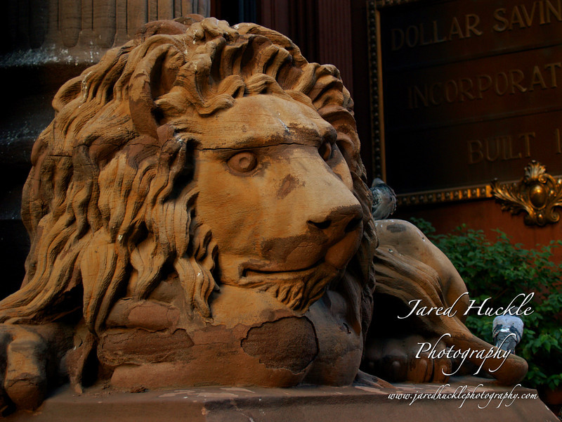 Lion sculpture outside of Dollar Bank, 4th Avenue, Pittsburgh