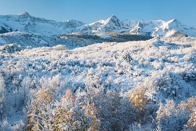 Snowy Colorado Morning