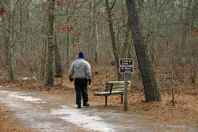 Wertheim Wildlife Refuge White-Tailed  Deer Trail Short Loop