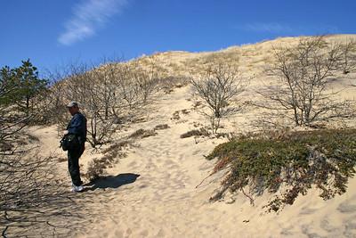 Walking Dunes Amagansett (Part I)