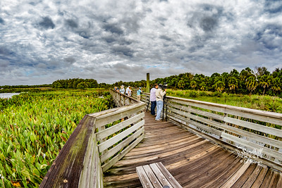 Local wetlands with 8mm fisheye Rokinon
