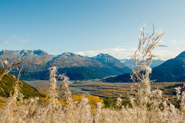 Kenai Fjords National Park Views