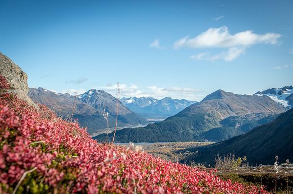 Kenai Fjords National Park Views 2