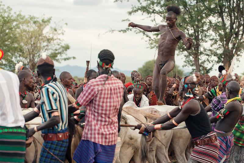 """Hamer Tribe, ceremony of  """"bull jumping"""""""