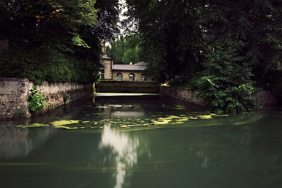 Azay le Rideau, Gardens, July 2011