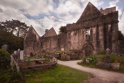 Muckross Abbey, May 2014