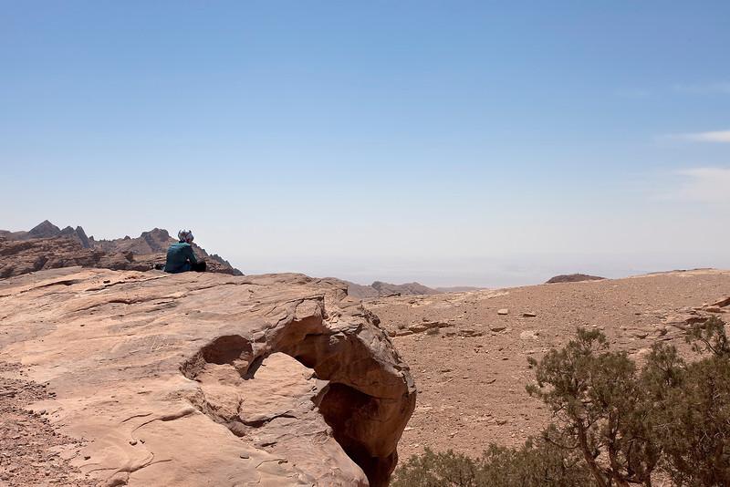 Wadi Araba, May 2012