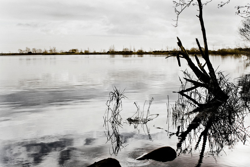 Ballyronan, Lough Neagh, November 2009