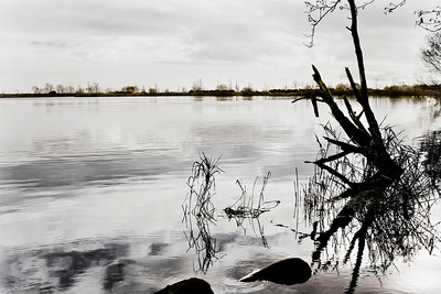 Ballyronan, Lough Neagh, November 2009