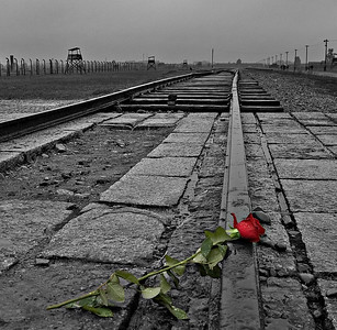 Auschwitz again, this time looking towards the iconic 'Gate of Death' gatehouse and the 'Altejudenrampe'.